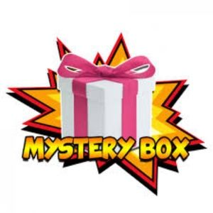 Other - Clothing Mystery Box $40.00 (6-8 Items) 4 Pounds